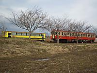 Isumi_kuniyosi20120226_09