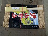 Isumi_nakano20120310_13