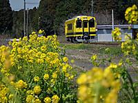 Isumi300_20120327_13