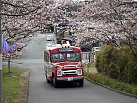 Sawara20120407_06