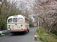 Sawara20120407_07