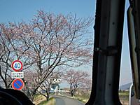 Tsuchiura20120408_10
