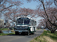 Tsuchiura20120408_21