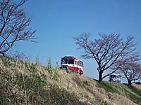 Tsuchiura20120408_22