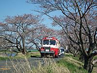 Tsuchiura20120408_31