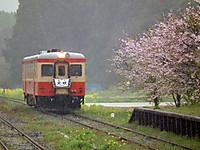 Isumi_kiha52_20120414_02