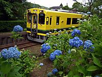 Isumi300_20120608_02