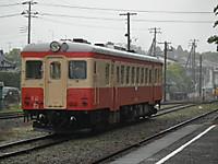 Isumi_hotaru20120609_05