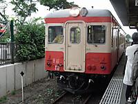 Isumi_hotaru20120615_03
