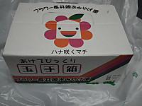 Isumi_hotaru20120615_14