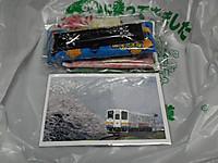 Isumi_hotaru20120615_15