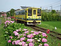 Isumi200_20120617_03