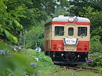 Isumi_kiha52_20120624_01
