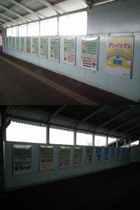 Choshi20120701_08