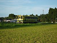 Isumi_moomin20120809_01_2