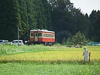 Isumi_kiha52_20120813_12