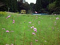 Isumi_moomin20121007_07