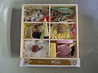 Kanagawa20121013_07