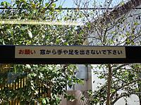Isumi300_20121021_22