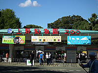 Ueno_20121029_11