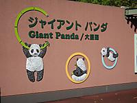Ueno_20121029_12