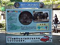 Ueno_20121029_45
