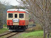 Isumi_kiha52_20121111_08