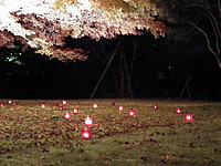 Meijimura20121123_63