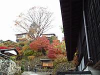 Kiso_ina20121124_11
