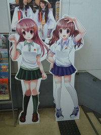 Nankai20121201_05