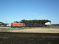 Tokiwaji20121202_10