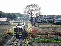 Tokiwaji20121202_12