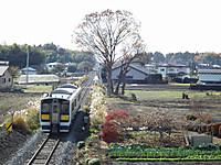 Tokiwaji20121202_13