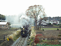 Tokiwaji20121202_15