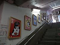 Wakayama20121201_01