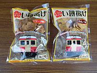 Isumi_rail20121208_03