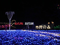 Itihara20121207_03