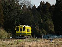 Isumi300_20130103_03