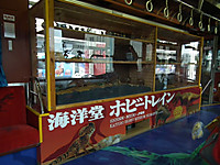 Sikoku20130114_08