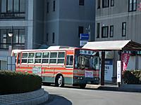 Big_hinamaturi20130224_02