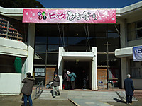 Big_hinamaturi20130224_23