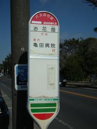 Wadaura20130224_04