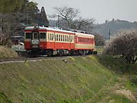 Isumi_kiha52_20130310_05
