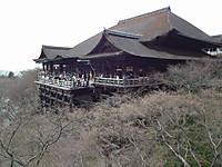Kansai20130317_09