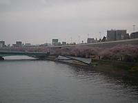 Watarase20130331_09