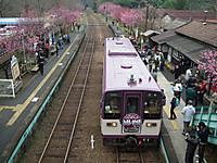 Watarase20130331_18