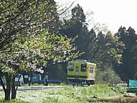 Isumi300_20130404_01