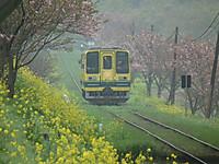 Isumi200_20130405_01
