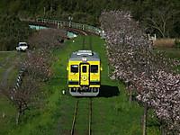 Isumi350_20130408_02