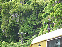 Isumi_rail20130502_01